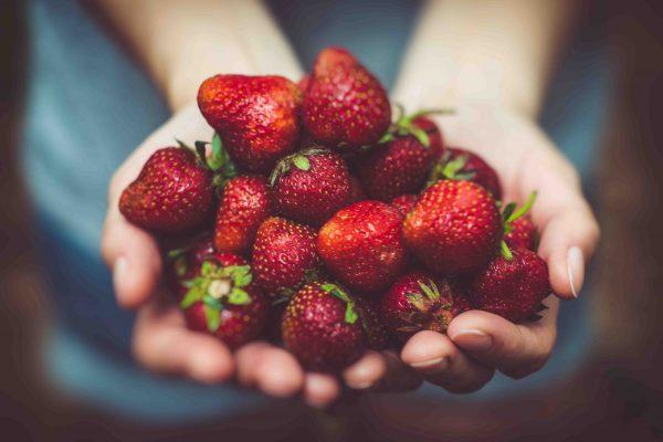 Frutas huerto ecológico
