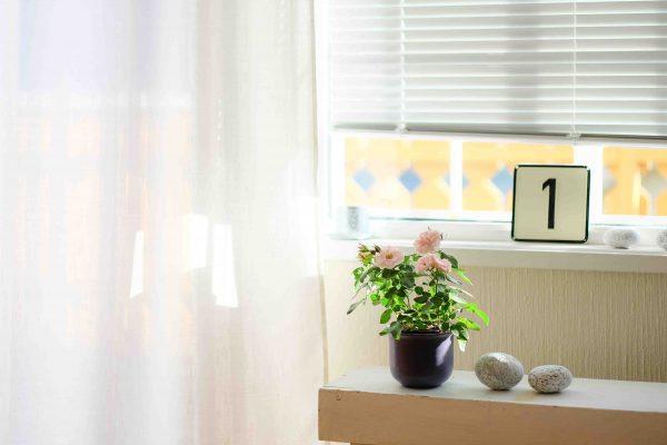 cortinas amueblar alquiler