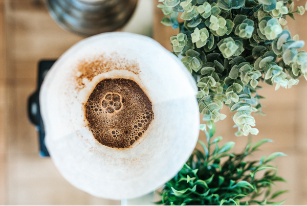 café fertilizante natural